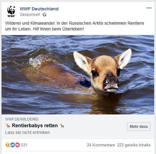 WWF - Nachrichtenwerte in PR und Marketing nutzen - Der deutsche PR Blog